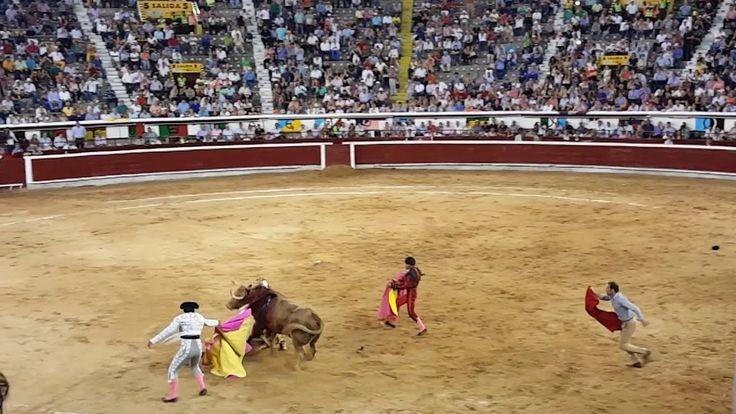 CORRIDAS DE TOROS FERIA TAURINA CALI 2016 CAÑAVELALEJO, EL MEJOR DE LA T...
