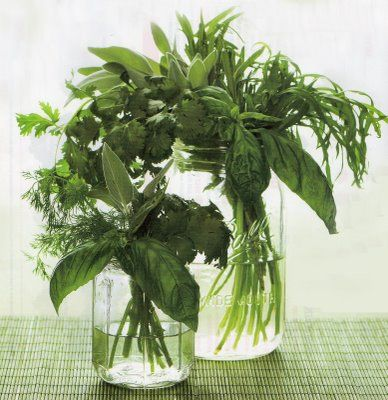 Herb bouquets as centerpieces--perfect for a garden party and economical.