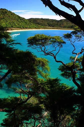 Abel Tasman National Park, New Zealand |  Achim Thomae