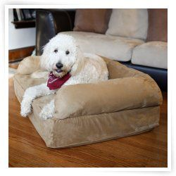 Best Snoozer Luxury Dog Sofa With Memory Foam Dog Couch Dog 400 x 300