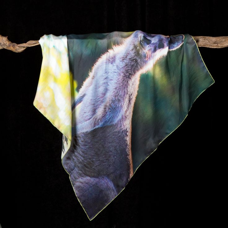 Miss Roo.  Kangaroo. Sea-Nik's luxury silk scarves show casing Australia's wonderful Eastern Grey Kangaroo.  This scarf is the perfect holiday gift or souvenir.