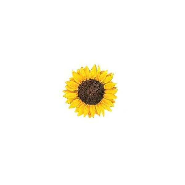 This is an image of Terrible Tiny Sun Drawing