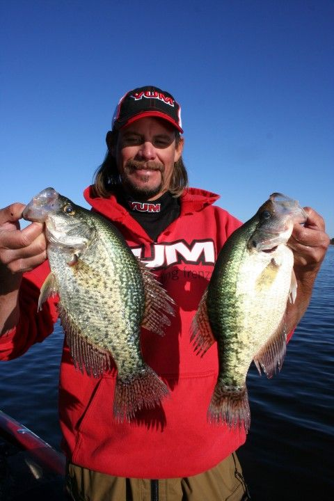17 best images about fishing for panfish on pinterest for Crappie fishing at night