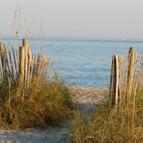 Wilmington/Cape Fear Beaches
