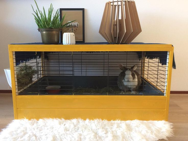 51 vind-ik-leuks, 5 reacties - Karlijn Knippen (@vanoudnaarlijn) op Instagram: 'Zo! ook ons konijnen vriendje 🐰 Coco zit er gezellig bij in z'n nieuwe 'van oud naar Lijn' huis 😆>>…'