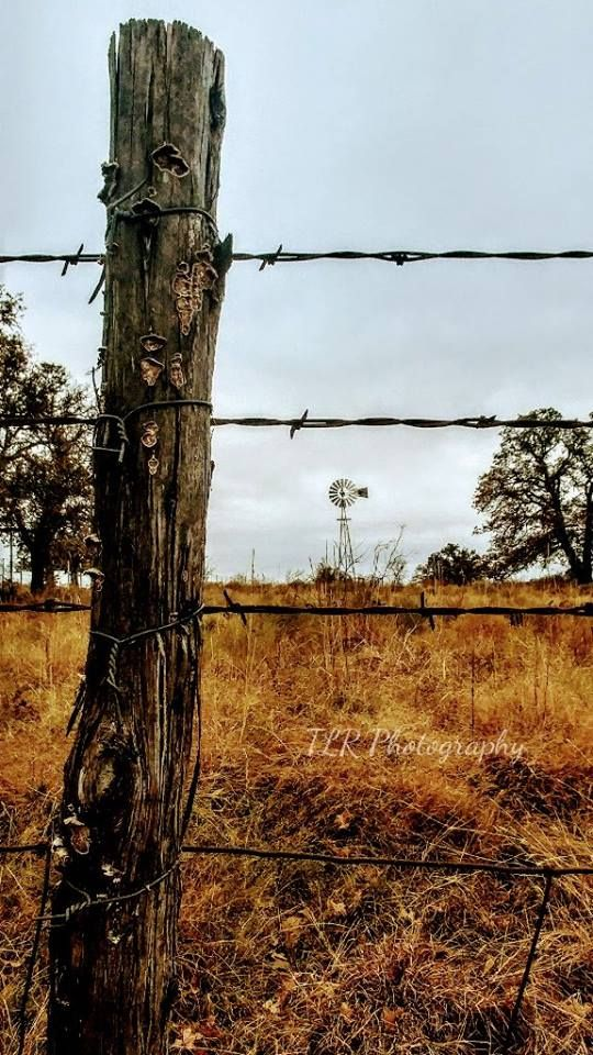 Gibtown Rd ~ Perrin, Texas by Tammy Reynolds