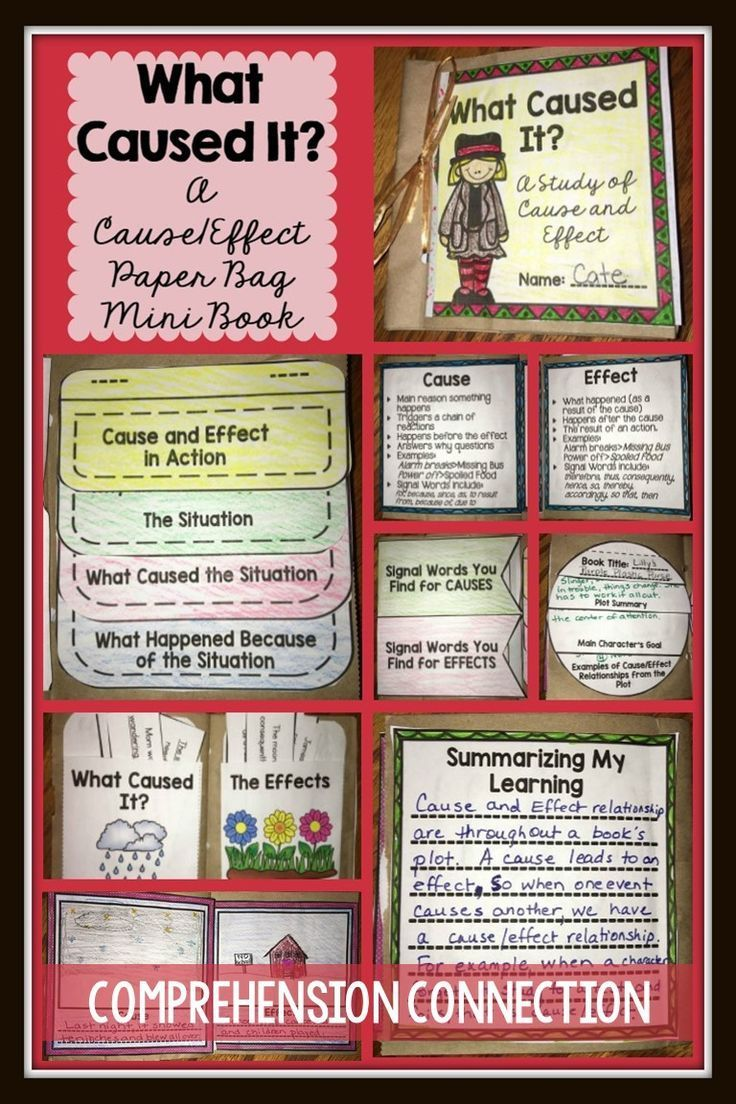best ideas about cause and effect examples cause cause and effect paper bag mini book project