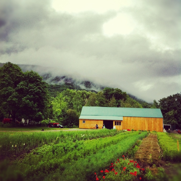 Massachusetts Farm: 109 Best Easthampton, MA Images On Pinterest