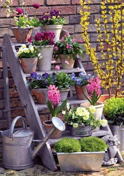 Courtyard Garden - display all pretty flower pots in one area