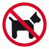 etiquetas señalización cristales prohibido perros apli 11536 #señalización #empresa #fumar #bebeabordo #prohibido #pegatinas #adhesivos #oficina #negocio #business #papeleria #material