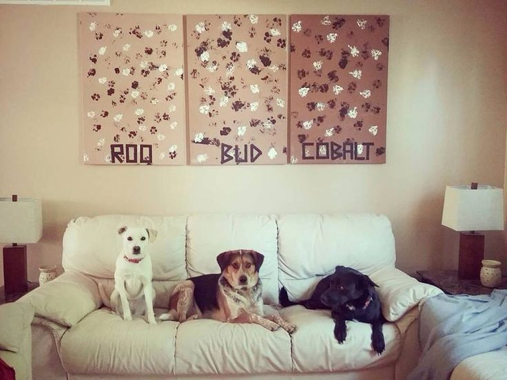 Paw print art on a canvas