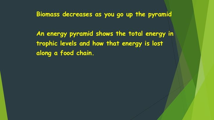 Biomass decreases as you go up the pyramid  An energy pyramid shows the total energy in  trophic levels and how that energy ...