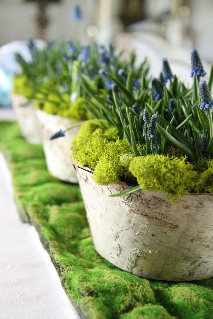 Spring Centerpiece - from heather christo