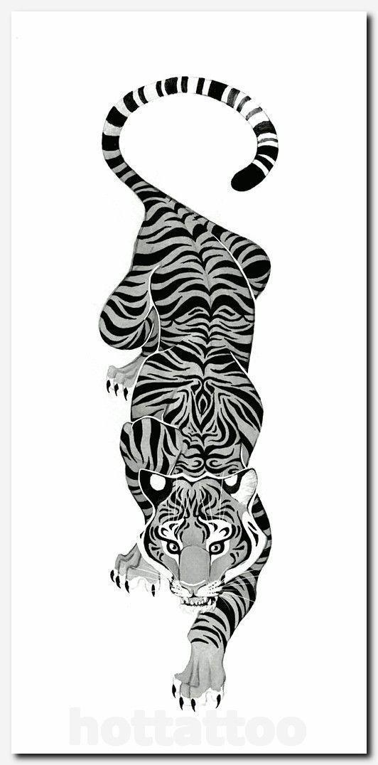 #tigertattoo #tattoo hawaiian floral tattoos, gemini and aquarius combined tattoos, wolf tattoo designs for women, celtic cross tattoo flash, family tree tattoo on back, tattoo japanese letters, ideas for first tattoo guys, feminine inner arm tattoos, tribal rose designs, around ankle tattoo, shoulder tattoo words, tribal arm and chest tattoos, tatouage bras celtique, cool t shirts online, girl tattoos on lower arm, meaning of tribal tattoos #treetattoosonback #hawaiiantattoosforwomen