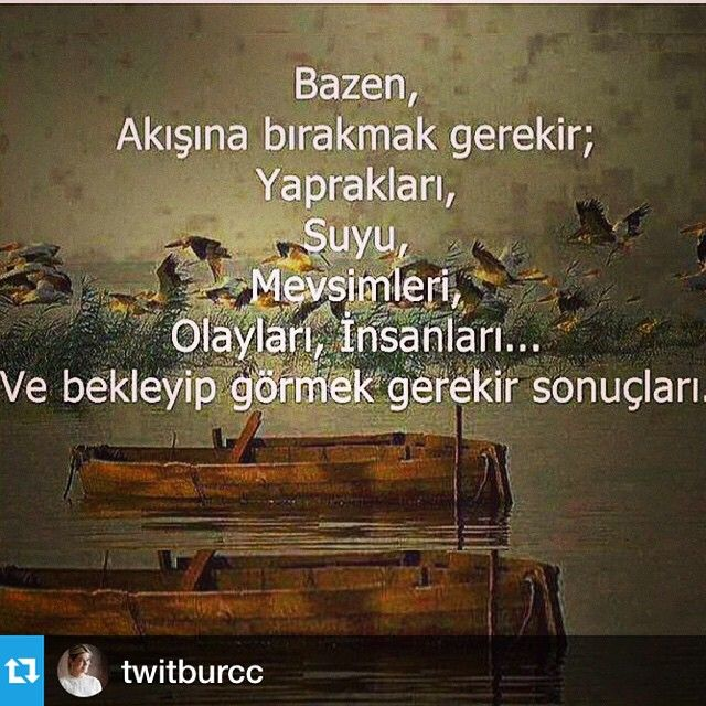 Seyda Yıldırım @avseyda Instagram photos | Websta (Webstagram)