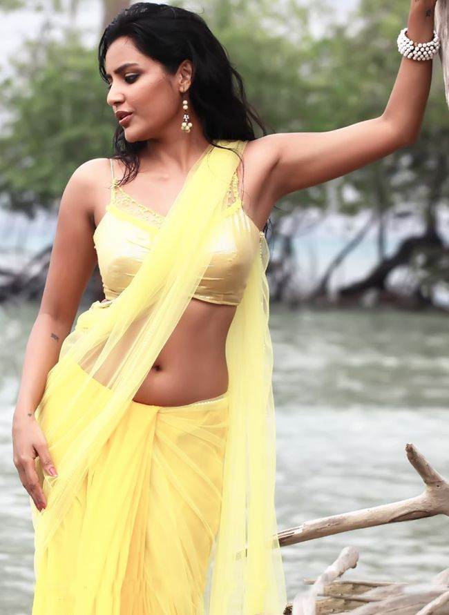Priya Anad Hot Naval Show in Saree