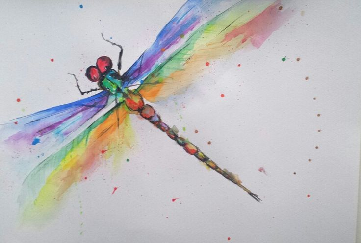 Dragonfly, watercolor