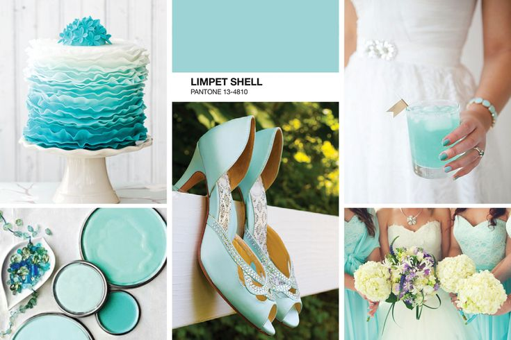 1000 images about limpet shell pantone 2016 on pinterest for Ibiza proms cd