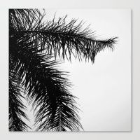 The Palm Project Canvas Print by CoKiCu NOW AVAILABLE on Society6