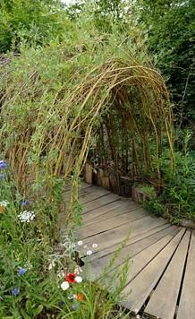 Living willow tunnel with wooden pathway / repinned on toby designs