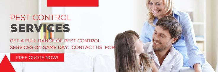 The professionals at Pest Control Brisbane have adequate knowledge of advanced procedures to handle the issue.
