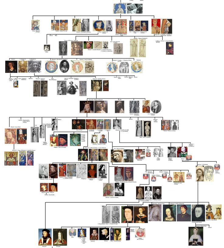 not your mothers genealogy