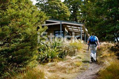 Man at Mt Arthur Hut, Kahurangi National Park, New Zealand Royalty Free Stock Photo