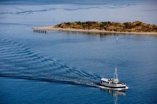 Trovolo - Dunedin #travel #NewZealand #photography #NZ #fun #outdoors #nature #dunedin #cruise #wildlife