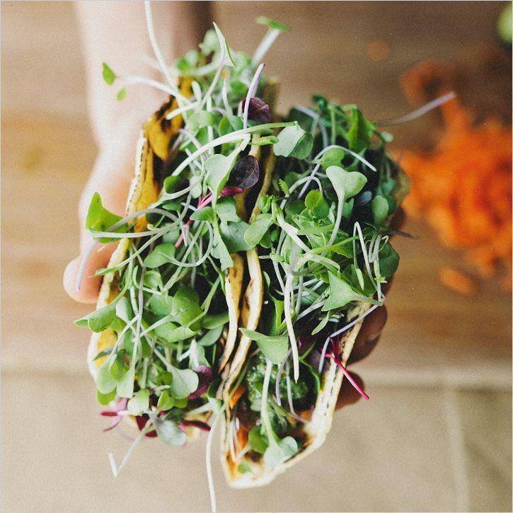 Shiitake mushroom + lentil tacos