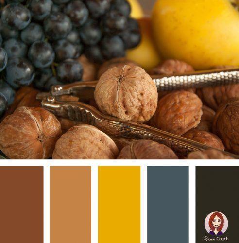 18 Farbkombinationen aus der Natur • Fruchtige Farben für deine Räume!