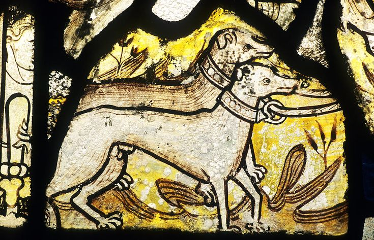 Medieval Hunting Dogs, Stained Glass Window Photograph