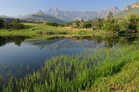 An awe-inspiring and truly magnificent range of mountains, the majority of which lie in KwaZulu Natal and stretch well over 200 kilometres forming a natural border between Lesotho and KwaZulu Natal, are known simply as 'the dragon mountain' or Drakensberg.