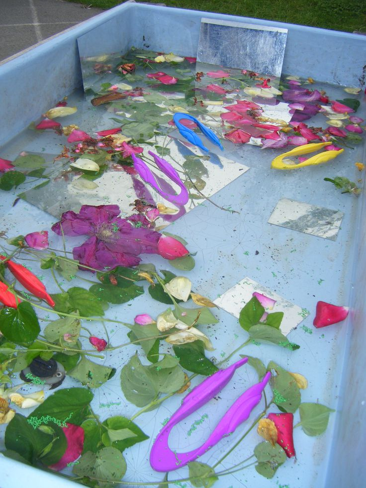 Petals, leaves, safety mirrors and tweezers