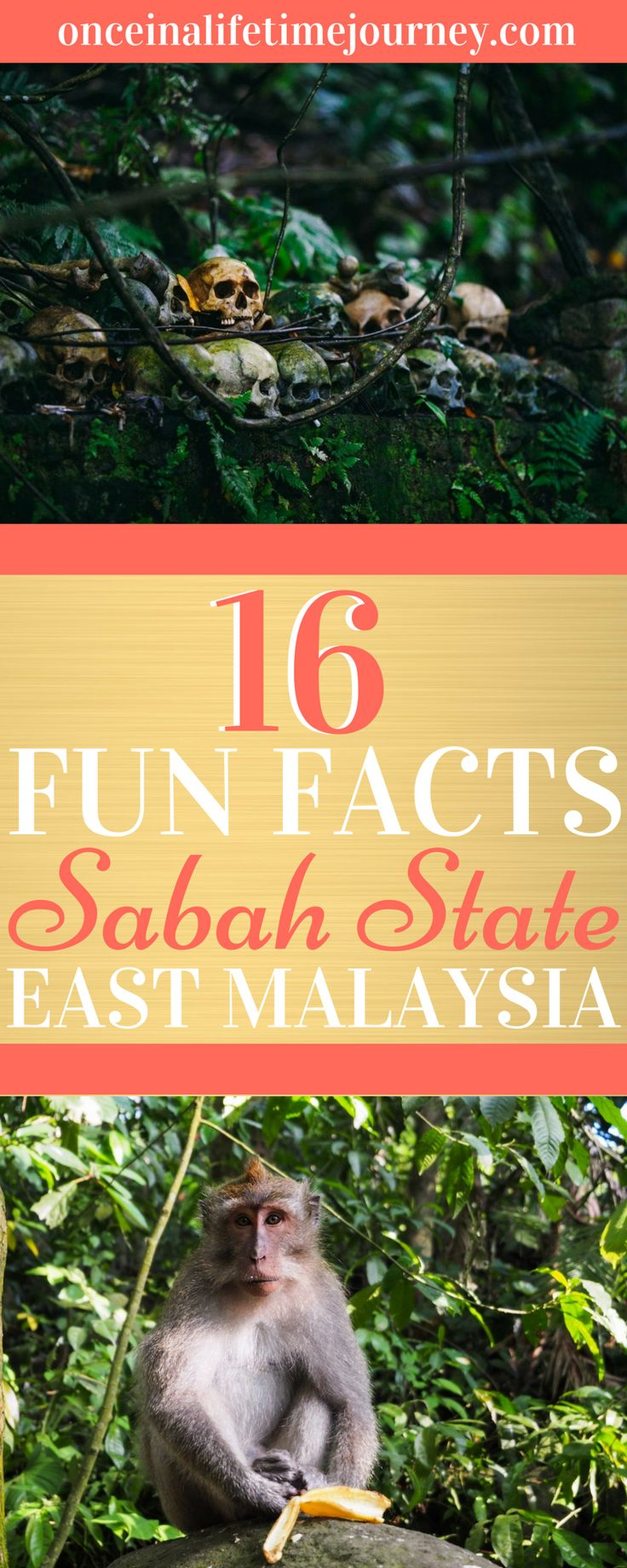 The geographical division of Borneo, where Malaysia's Sabah State is located, is sometimes confusing to understand. It is the third largest non-continental island in the world and shares space with the nations of Brunei and Indonesia. Click through to find out some more fun facts about Sabah State in Malaysian Borneo. | Once in a Lifetime Journey #borneo #malaysia #sabah #eastmalaysia #funfacts
