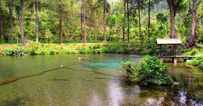 PERGIPEDIA  - Kisah Misteri Ikan Dewa Di Telaga Rambut Monte Blitar Jawa Timur . Wisata Petilasan...