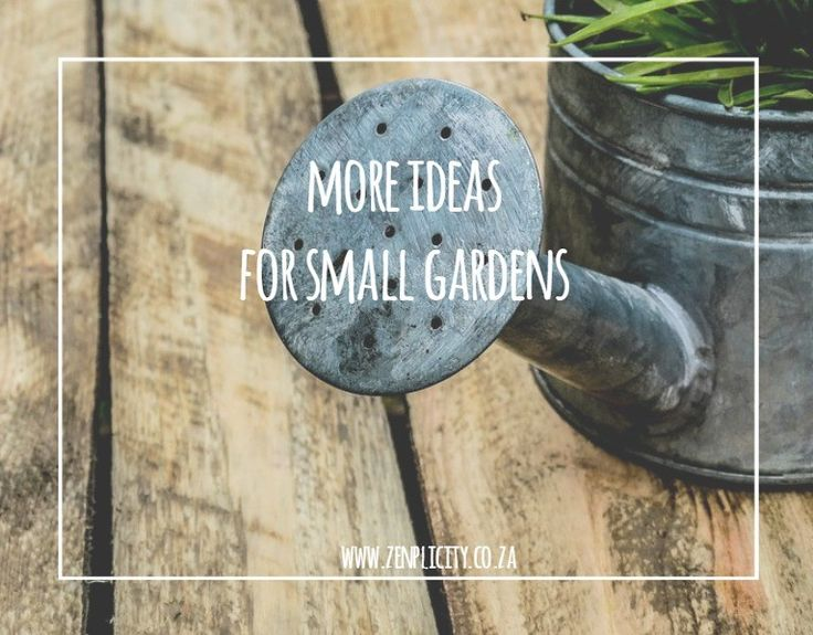 Zenplicity Blog: Simple and Lovely Small Garden Ideas