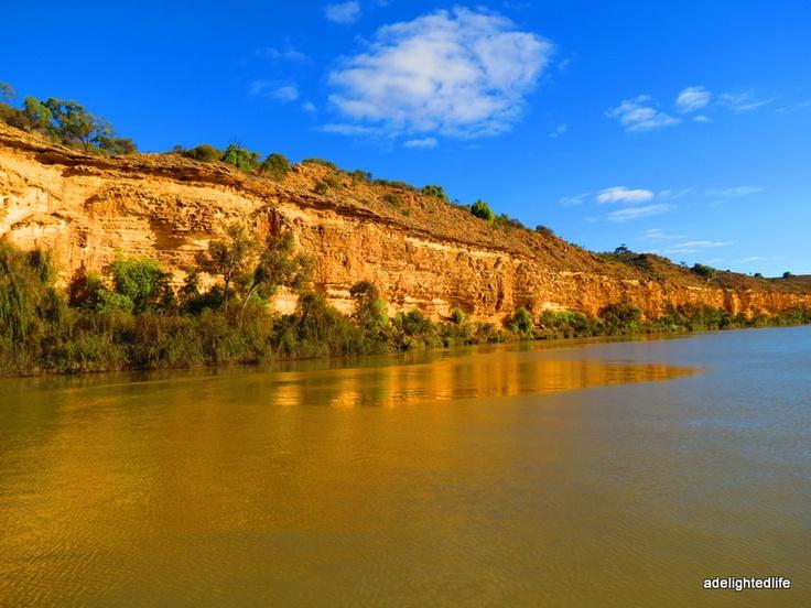 Winter golden. Murray River, South Australia.
