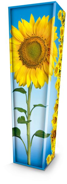 Sunflowers Picture Coffin available nationwide with FREE delivery from The Coffin Company. http://coffincompany.co.uk/colourful-coffins/picture-coffins