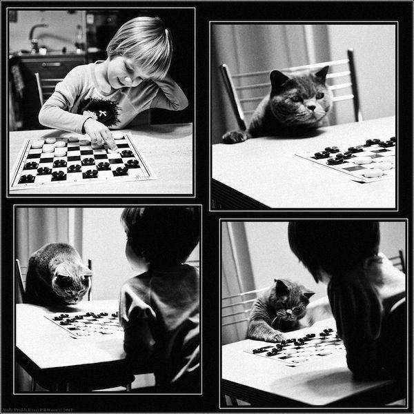 Heartwarming Photos Tell Of A Friendship Between A Girl And A Cat - DesignTAXI.com