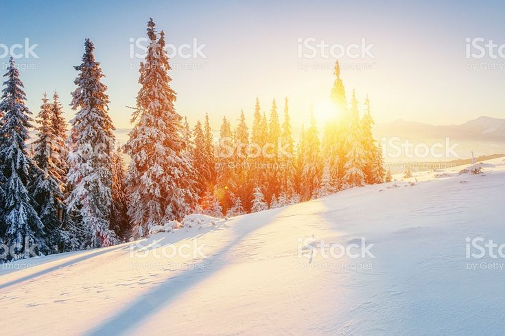 Fabulous winter landscape in the mountains royalty-free stock photo
