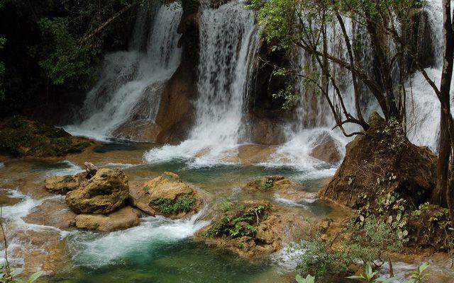 Resultado de imagen para selva lacandona chiapas