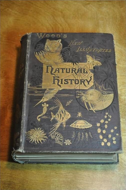 vintage history books