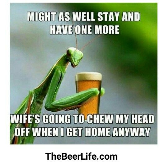 Haha this is 100% true! Check out TheBeerLife.com!