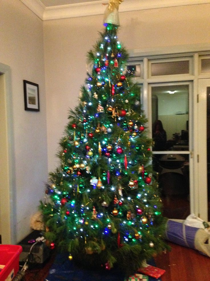 January 3rd Picked up Ben and Indie from the airport at 8.30 so India could finally have her Christmas with us.  Tree was lit up and smelling delicious.