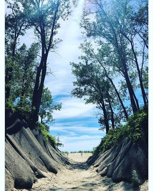 Dunes. Arrakis is the spice #ochosaños Prince Edward county Ontario
