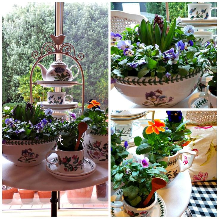 Pretty hyacinths and viola's in the Portmeirion - the 'Botanical' series - makes for a sweet look in the garden room. xo