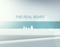 The Real Bears - DC by Lucas Zanotto, via Behance
