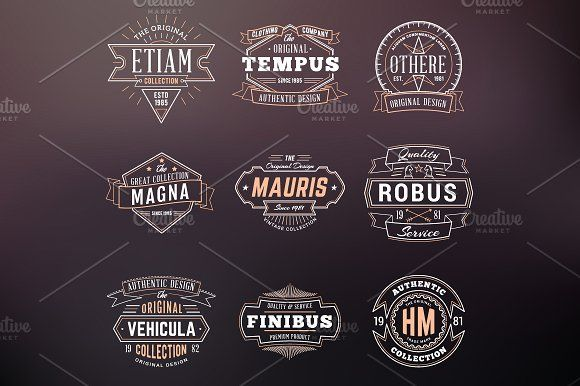 Set of Vintage Thin Line Badges by AntartStock on @creativemarket