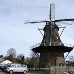 Provincie Drenthe  Erica. De Heidebloem.