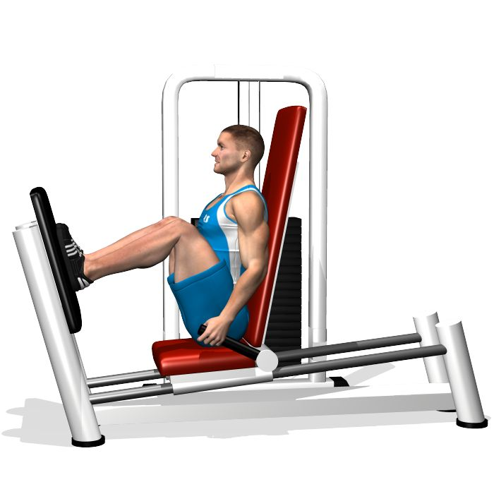 Best 25+ Leg Press Ideas On Pinterest